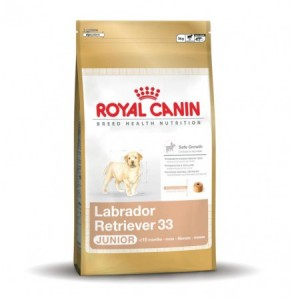 Royal Canin - Labrador Retriever Junior 33