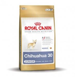 Royal Canin - Chihuahua Junior 30