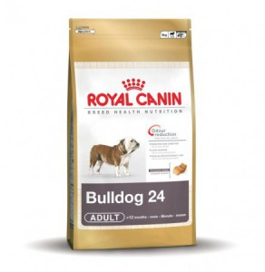 royal canin bulldog adult 24