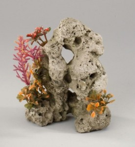 coral stone ml