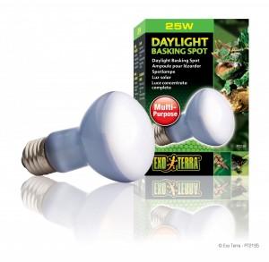 Exo Terra - Daylight Basking Spot