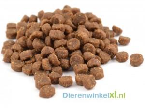 Bikkel - Premium - Pup SB/MB