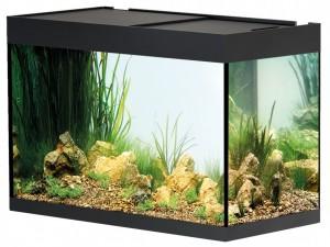 Oase - StyleLine 175 Aquarium, Zwart
