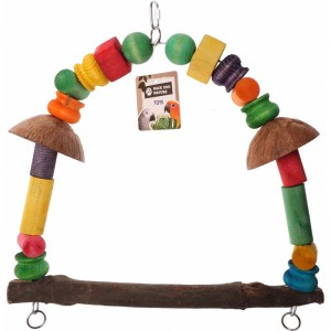 Back Zoo Nature Parrot Coconut  Swing