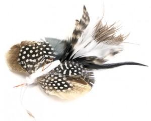 Tabby Tijger - Langstaart Vlinder