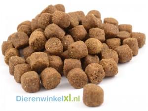 Bikkel - Premium - Pup Large Breed