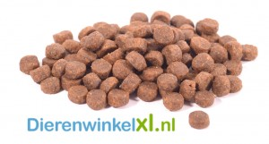 Bikkel - Premium - Maintenance Small Breed