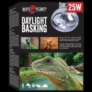 Repti Planet - Bulb Daylight Basking Spot