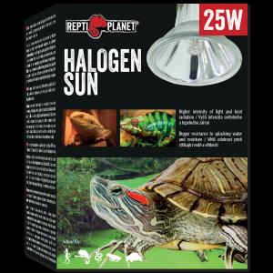 Repti Planet - Bulb Halogen Spot