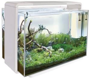 Superfish - Home 110