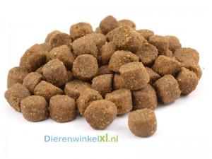 Bikkel - Premium - Sensitive Lam & Rijst