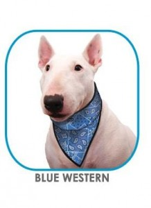 Image of Aqua Coolkeeper Bandana - Blue Western