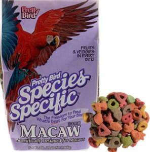 Pretty Bird - Macaw (Hi-Energy)