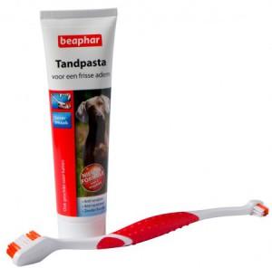 Afbeelding Beaphar Tandpasta & Tandenborstel voor hond en kat Per stuk door DierenwinkelXL.nl