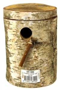 Broedblok Berken - exoten kopen