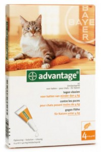 Image of Advantage - Kat 40