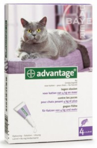 Advantage - Kat 80