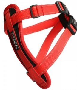 Productafbeelding voor 'Ezy dog - Tuig - Rood'