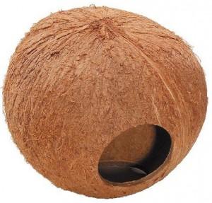 Kokosnoot Huis