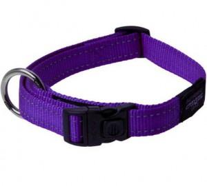 Productafbeelding voor 'Rogz for dogz - Halsband - Paars'
