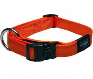 Productafbeelding voor 'Rogz for dogz - Halsband - Oranje'