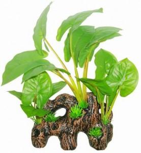 Superfish - Easy Plants Wood Anubias