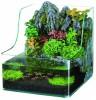 Sf Planty 25 Aquarium