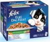Felix - Multipak Elke Dag Feest