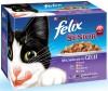 Felix - Senior (12x100gr)