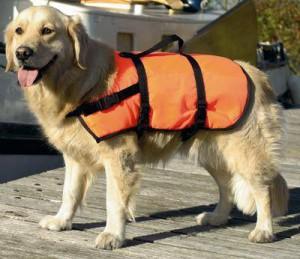 Afbeelding Zwemvest M voor de hond Per stuk door DierenwinkelXL.nl