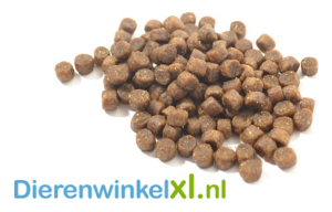 Bikkel - Kitten Premium