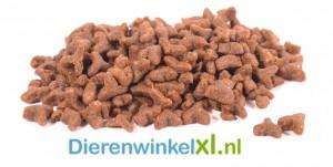 Bikkel - Premium Kat - Adult