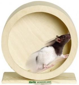 Wonderland - Bogie Wheel