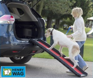 Henry Wag Dog Ramp (hondenloopplank)