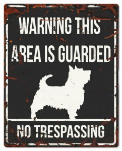 D D Waarschuwingsbord Square Terrier (zwart)