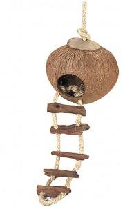 Kokosnoot Huis Met Ladder Ophang