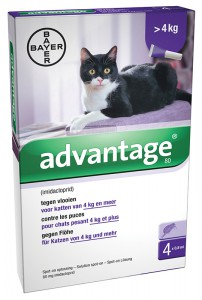 Image of Advantage - Kat 80
