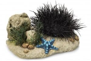 Ebi - Aqua Della Sea Hedgehog L