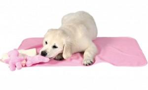 Trixie - Puppyset - Roze
