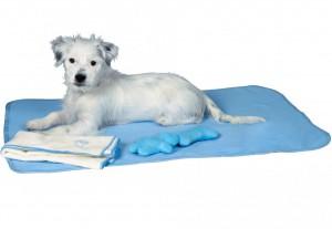 Productafbeelding voor 'Trixie - Puppyset - Blauw'