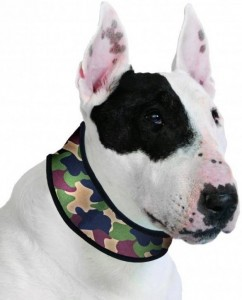 Image of Aqua Coolkeeper Collar Camouflage