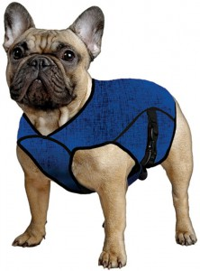 Aqua Coolkeeper Pet Jacket Blue