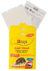Zapi - Lijmval voor Muizen & Insecten