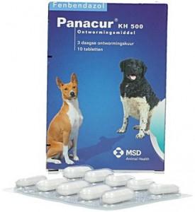 Panacur - Ontwormingsmiddel