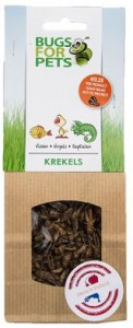 Bugs for Pets - Krekels