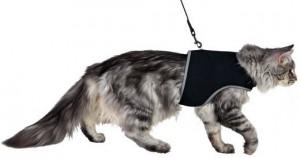 Trixi - Kattentuig met riem