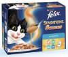 Felix - Pouch 8-p Sensations Jelly Vis