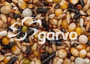 Garvo - G-spirits Solution (3862)