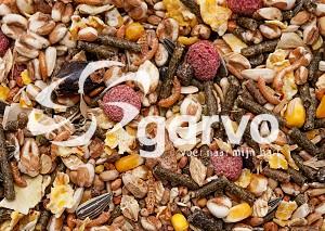 Garvo - Hamster en rat (6504)