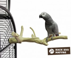Back Zoo Nature - Java Multi Perch